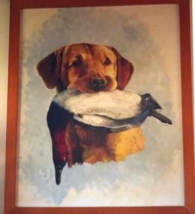 dogWall
