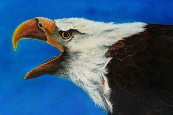 Franks Eagle