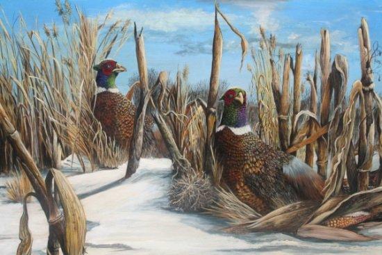 PheasantsForever