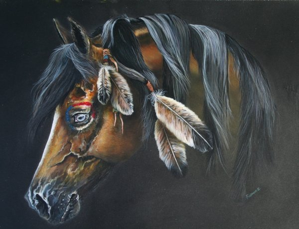 Pony named Freedom