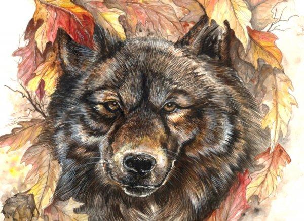 wolfInLeaves